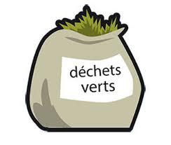 déchets_verts_collecte3